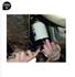 Imagen de Juego cazoletas para filtros aceite FORCE 61917